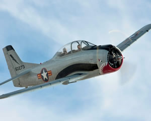 Aerobatic Warbird Flight, 25-minute - Hunter Valley