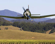 The Adrenalin Junky 30 Minute Aerobatic Experience - Adelaide
