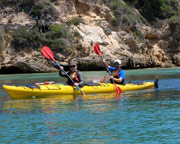 Sea Kayaking, 1-day Point Nepean Dolphin Sanctuary - Melbourne