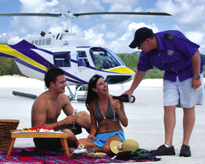 Helicopter Adventure, Whitehaven Beach Picnic, 2 hours - Whitsundays