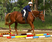 http://www.adrenalin.com.au/files/adventures/images/12995/kids-school-holiday-horse-riding-camp-half-day-beginners-58-years-sydney_thumb.jpg