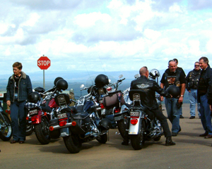 Harley Davidson, 2hr Top of the Range Tour - Sunshine Coast