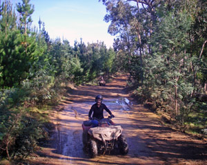 Quad Bike Tour, 2.5hr Tour - Gippsland, Melbourne Region