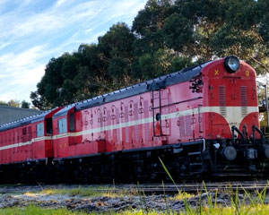 Drive a Diesel Train, Full Day Course - Bellarine Peninsula, Queenscliff VIC