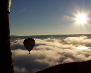 Hot Air Balloon Ride and Vineyard Breakfast - Orange NSW