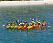 Sea Kayaking, Half-Day Inner Island Turtle Tour - Airlie Beach, Whitsundays