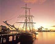Sailing, Wine & Canapé Cruise - Sydney