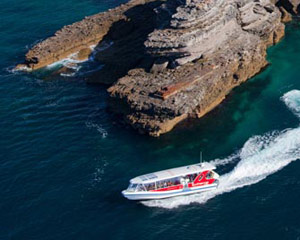 Eco Hidden Secrets Cruise, 105mins - Jervis Bay, NSW