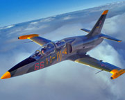 Jet Fighter Flight, L-39 Top Gun Mission, 20-minute - Hunter Valley