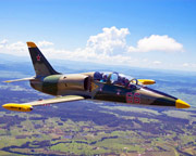 Jet Fighter Flight, L-39 Top Gun Mission, 30-minute - Hunter Valley