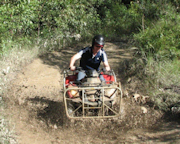 Quad Bike - 2 Hour ATV Rainforest Tour - Cairns (Includes Hotel Transfers*)
