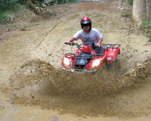 Quad Bike - 1 Hour ATV Rainforest Tour - Cairns