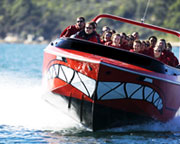 Jet Boat Circular Quay 30 Mins For 2 - FATHER'S DAY SPECIAL