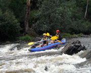 White Water Kayaking Adventure, Half-Day - Yarra, Melbourne