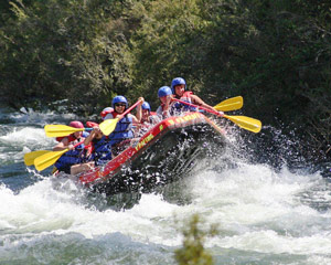 White Water Rafting, 1 Day Mitta Mitta River - Omeo