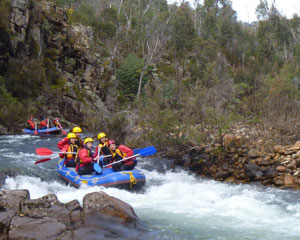 White Water Rafting, Half Day - King River Melbourne