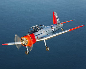 Classic Warbird Flight For Up To 3 People Over Cape Byron Coast