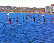 Stand Up Paddle Boarding, Group Lesson - Rose Bay
