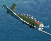 Aerobatic Warbird Flight, 45 Minutes - Perth