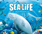 SEA LIFE Sydney Aquarium Entry, Sydney
