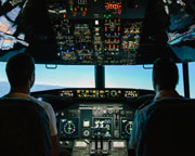 Flight Simulator, Newcastle - 30 Minute Flight