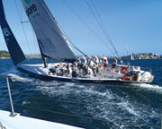 America's Cup Yacht Racing - Sydney Harbour SPECIAL OFFER 2-For-1