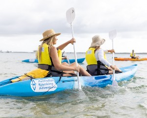 Sea Kayaking, Dolphin and Stradbroke Island Tour, Half Day - Gold Coast