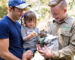 Featherdale Wildlife Park, Adult Entry - Sydney