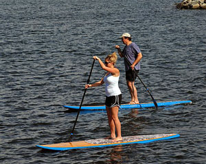 Stand Up Paddle Boarding, 1 Hour Paddle Board Hire - Brisbane