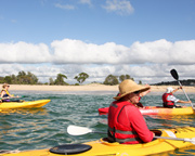 Beaches and Royal National Park Kayak Tour, 3hr - Bundeena, Sydney