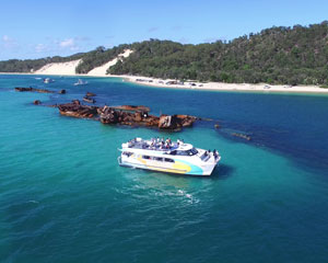 Dolphin & Tangalooma Wreck Cruise - Brisbane