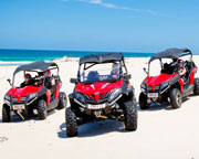Quad Bikes, Stradbroke Island Dune Buggy Adventure, Half Day - Gold Coast
