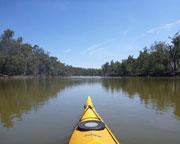 Kayaking, 3-day Murray River - Barmah National Park - Melbourne