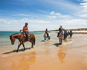 Horse Riding, St Andrew's Beach Horse Ride, 2 Hours - Mornington Peninsula, Melbourne
