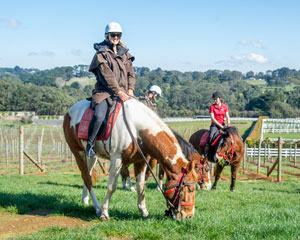 Horseback Winery Tour - Mornington Peninsula, Melbourne (2 Hour)