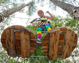 Tree Top Adventure Park Experience - Newcastle