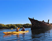 Dolphin Sanctuary & Ship Wreck Kayak - Adelaide