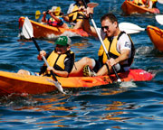 Kayak Hire Sydney Harbour, 4 Hour Double Kayak Hire - Manly