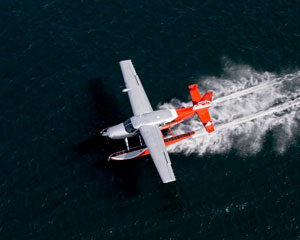Sydney Seaplanes Fly & Dine - Scenic Flight And Romantic Secluded Beach Picnic