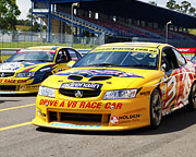 V8 Race Car 4 Lap Drive - Launceston, Tasmania