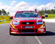 V8 Race Car 4 Lap Drive - Calder Park, Melbourne