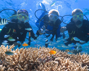 SCUBA Diving, 1 Day Certified Dive Trip - Great Barrier Reef, Cairns