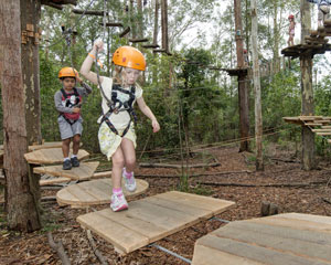 Tree Top Adventure Park Experience For Children 3-9 - Newcastle