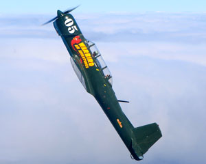 Aerobatic Warbird Flight, 15 minutes - Moorabbin, Melbourne