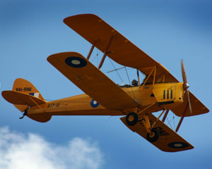 Tiger Moth Vintage Biplane, 30 Minute Adventure Flight - Newcastle