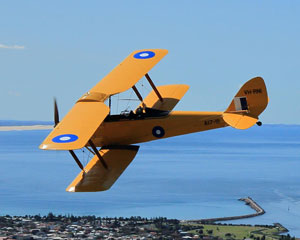 Tiger Moth Vintage Biplane, 20 Minute Aerobatic Flight - Newcastle