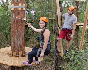 Tree Top Adventure Park Experience - Hills District, Sydney