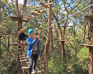 1-Day Tree Surfing Adventure Including CBD Transfers - Departs Melbourne