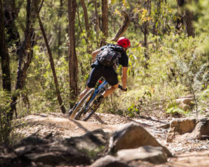 Blue Mountains MTB Bike Hire Experience - The Oaks Fire Trail and Single Track Package