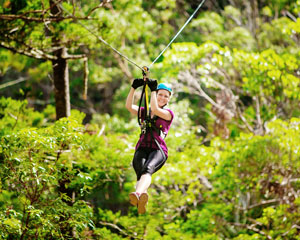 Canyon Flyer Guided Zipline Tour - Tamborine Mountain Gold Coast